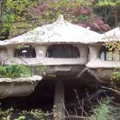 Гнездо для любителей экзотики