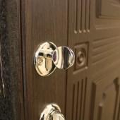 Стальные двери: красота и безопасность
