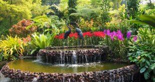 Уход за фонтаном в саду